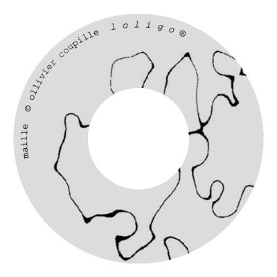 Ollivier Coupille CD _Maille_ (dessin Sofi Hémon)