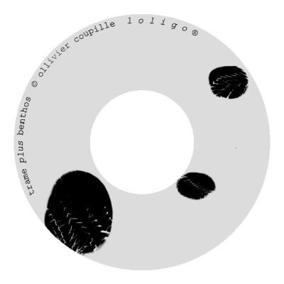 Ollivier Coupille CD _Trame plus Benthos_ (dessin_ Sofi Hémon)